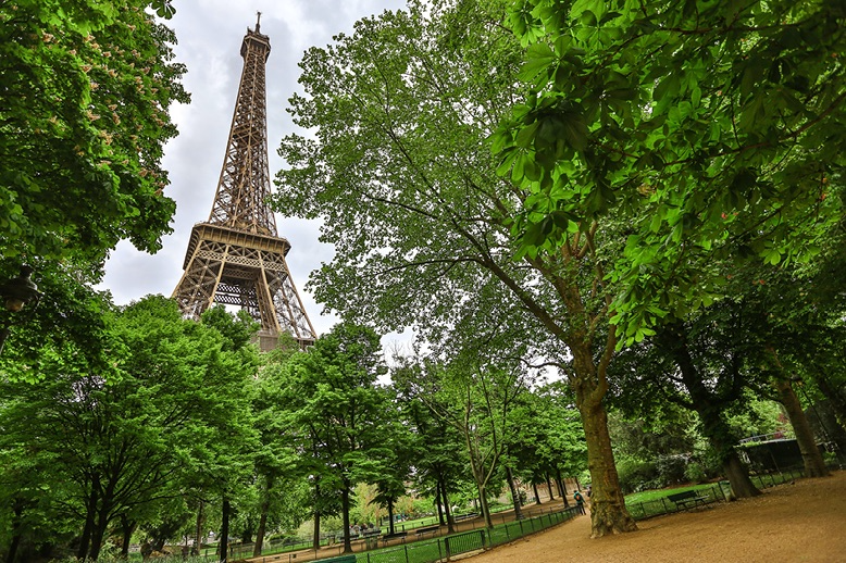 Eiffel Tower in background with green trees in foreground.
