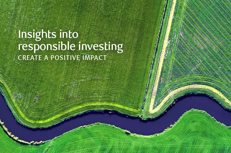 Insights into responsible investing newsletter IMG